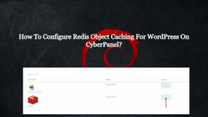 How To Configure Redis Object Caching For WordPress On CyberPanel?