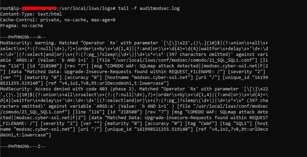 ModSecurity Audit logs