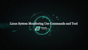 Linux Commands and Tools to monitor your server performance.