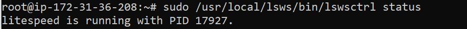 LiteSpeed status